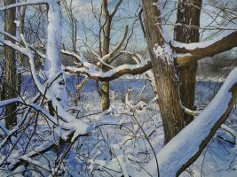 Trees Along the Huron River by PatrickBlakemore