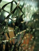 Cracked Glass by mxtheory