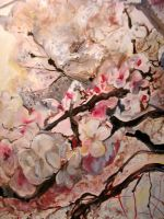 Cherry Blossoms by NewYearsEve