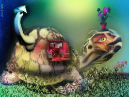 Homebody Turtle by altergromit