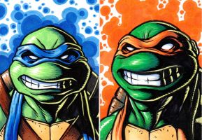 Tmnt-Leo and Mikey by monstrous64