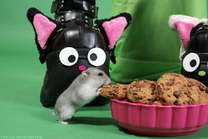 Herr Hildezart as cookie thief by hoschie