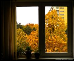 Outside My Window by eMBeeL
