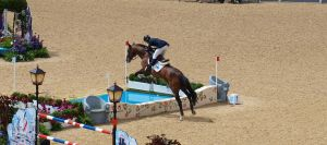 Olympics show-jumping 17 by TheManateePhotos
