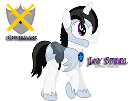 MLP FiM: Jay Steel The Royal Guard by CrystalTrainer