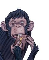 Chimp by AlexPerkins