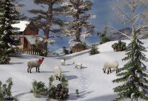 Sheep in the Winter Meadow by Dani3D