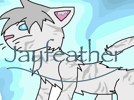 PoT Jayfeather by Blazestar12