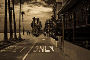 Venice Beach,LA California by dyfuzor