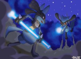 Riolu and Lucario training by OmaruIndustries