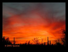 Bonfire Fall Storm Sunset by RooCat