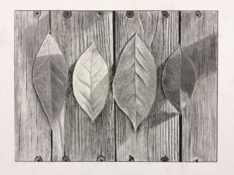 Leaves on Wood by tagroves