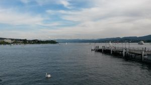 Zurich the by Andomian