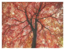 Red Tree by aakritiarts