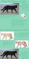 How to Draw a Cat - Body (Pt. 1) by Konokashi