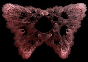 Pink Butterfly Fractal by dreams2media