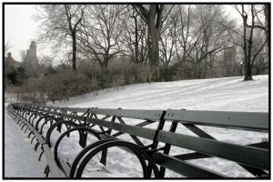 Snow-covered Benches 2 by Nefir