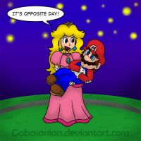 Mario + Peach - Opposite Day by Gabasonian