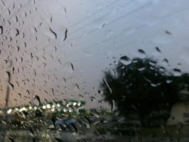 Water Droplets on My Window by willow1894