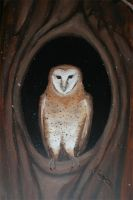 Mural WIP - Barn Owl by horusfeathers