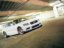 Audi A5 White Tiger by blackdoggdesign