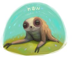 Naw sloth by Murph3