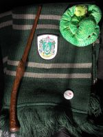 My Slytherin by LeaWer