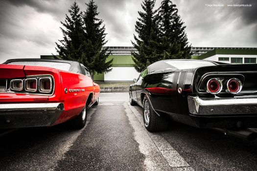 Double D by AmericanMuscle