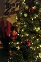 Christmas 2014 by acollins973