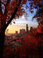 Seattle Through Autumn by princesse-cupcake