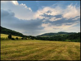 Field in Mlyniste by Pildik