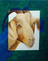 Blue goat by MedeiaDesigns