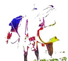 The Abstract Western Horse by misbeavin