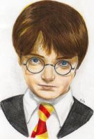 Harry Potter by yulss