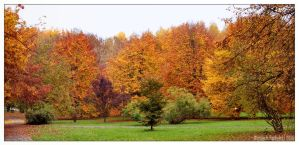 All the colors of Autumn by kazzdavore