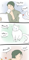Felines. by Colours07