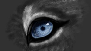 Eyepractise by Michihirp