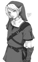 Link - Twilight Princess by keevs