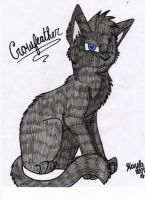 Crowfeather by Icewhisker16