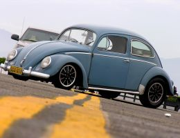Oval bug 2 by Boss429