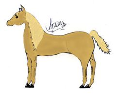 """""""Attempt"""" at drawing a horse by iluvhorsez-25"""