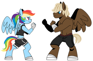 Ponies Sparring by dbkit