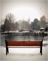 empty bench waiting for spring by Chrobal