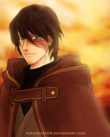 zuko the banished prince by sorceressmyr