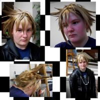 Roxas wig test by eclipsedsoul