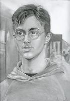 Harry Potter-OOTP by lyvvie