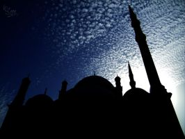 The Silhouette Mosque by Peter-Loza