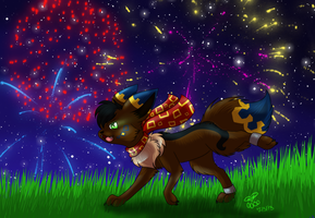 Running Though Fireworks by eevee4everX3