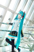 Sky Fall - Miku Cosplay by MonCosplay