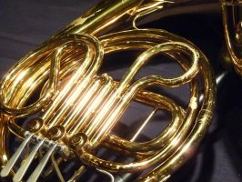 French Horn 1 by MrRstar